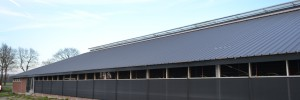 Verbouw ligboxenstal Siegerwoude